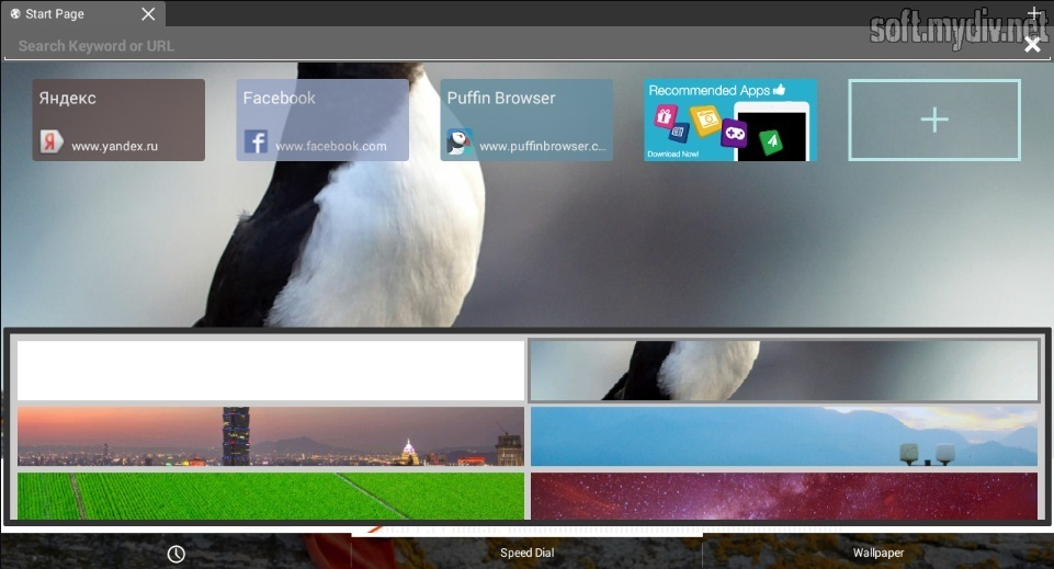 Puffin Web Browser - download program Puffin Web Browser for free