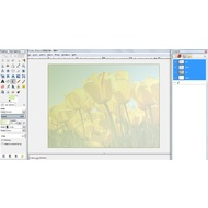 Apply gradient to a picture in GIMP