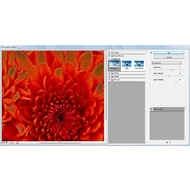 Diffuse Glow filter in Adobe Photoshop CC