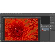 Layers in Adobe Photoshop CC